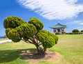 Korean Bell of Friendship pagoda and park Stock Photo