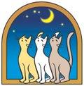 Kot księżyc trzy okna Zdjęcie Stock