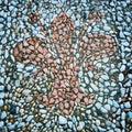 Królewski leluja rocznika skutek florencja miasta symbol retro filtrowa fotografia Zdjęcia Stock
