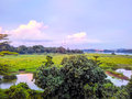 Kranji marshes green countryside at in singapore Royalty Free Stock Photo