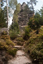 Krkavci kameny rocks in luzicke hory mountains rock formation called on czech german borders zittauer gebirge with tree around and Royalty Free Stock Photography