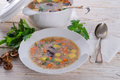 Krupnik – Polish Pearl Barley Soup Royalty Free Stock Photo