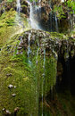 Krushuna waterfalls bulgaria covered with green moss near village nort famous tourist destination Stock Images