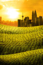 Kuala lumpur skyline over grass land field suring sunset photo Stock Images
