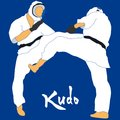 Kudo martial arts fighters illustration