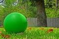 Kugel im Yard Stockfotografie