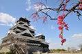 Kumamoto castle and Japanese apricot Royalty Free Stock Photo