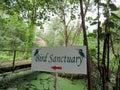 Kumarakom Bird Sanctuary in Kerala, India Royalty Free Stock Photo