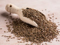 Kummel seeds carum carvi in a scoop Stock Photos