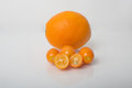 Kumquats a navel orange fresh next to showing size perspective Stock Photography