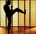Kung fu kick Royalty Free Stock Photo