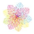 Kwiat grafika Zdjęcia Royalty Free