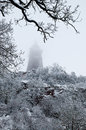 Kyffhauser Monument in winter forest Stock Images