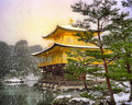 Kyoto golden pavilion Royalty Free Stock Photo