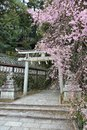 Kyoto - Hachi Shrine Royalty Free Stock Photo