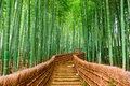 Kyoto, Japan Bamboo Forest Royalty Free Stock Photo
