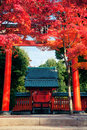 Kyoto shrine autumn in japan shoot at Royalty Free Stock Photography