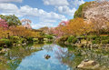 Kyoto in spring japan beautiful palace park Stock Image