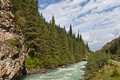 Kyrgyzstan mountain land of rivers and forests Royalty Free Stock Image