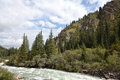 Kyrgyzstan mountain land of rivers and forests Stock Photography