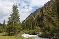 Kyrgyzstan mountain land of rivers and forests Stock Images