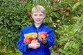 Ländlicher guy offering apple Lizenzfreie Stockbilder