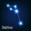 L étoile de delphinus de constellation pendant la nuit Photo libre de droits