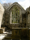 L irlande parc national de killarney Photos stock