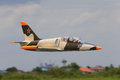 L-39 , radio control jet plane Royalty Free Stock Photo