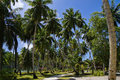 L union estate la digue seychelles islands beautiful palmtrees in with granite mountains Royalty Free Stock Photo