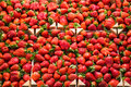 La boqueria strawberry stall in the most famous market in barcelona Stock Photo