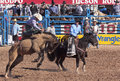 A la fiesta de los vaqueros tucson arizona february the rodeo on february in saddle bronc rider chance barnes aboard Royalty Free Stock Photos