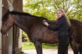 La fille balaye son poney Photo libre de droits