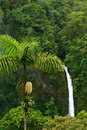 La Fortuna Falls Royalty Free Stock Photo