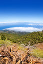 La Palma Caldera de Taburiente sea of clouds Royalty Free Stock Images