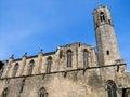 La seu大教堂在 塞罗那 库存图片