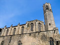 La seu cathedral in barcelona spain Stock Images