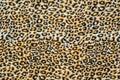 La struttura del tessuto alto della stampa di fine ha barrato il leopardo Immagini Stock