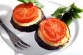 La tomate et l'aubergine font horizontal cuire au four Photo libre de droits