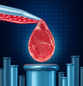 Lab grown meat concept as laboratory equipment developing artificial beef by cultivating animal tissue in vitro resulting in Stock Photo