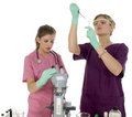 Lab Techs or Med Students Royalty Free Stock Photo