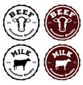 Label beef and milk vector Stock Photography