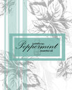 Label for essential oil of peppermint