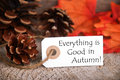 Label with everything is good in autumn autumnal the words Stock Images