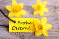 Label with frohe ostern the german words which means happy easter Stock Photography