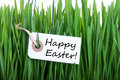 Label with happy easter on it in green grass as background Royalty Free Stock Photography