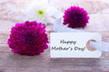 Label with happy mothers day and purple flowers Royalty Free Stock Image