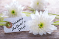 Label with happy mothers day white and white blossoms Royalty Free Stock Photography