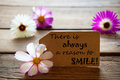 Label with life quote there is always a reason to smile with cosmea blossoms brown purple and white on wooden background vintage Stock Images