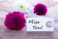 Label with miss you and flowers as background Royalty Free Stock Photography